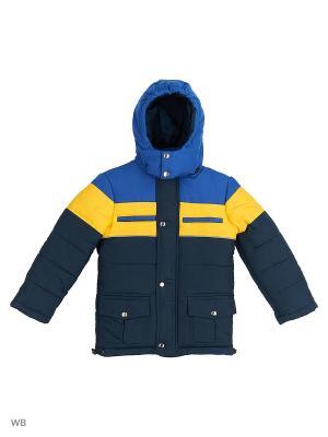 Куртки Senso kids. Цвет: темно-синий