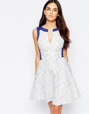 Hybrid Короткое приталенное платье с контрастной отделкой и кружевом E. Цвет: кремовый