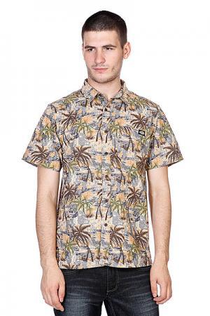 Рубашка  Honolulu Blue Dickies. Цвет: коричневый,синий