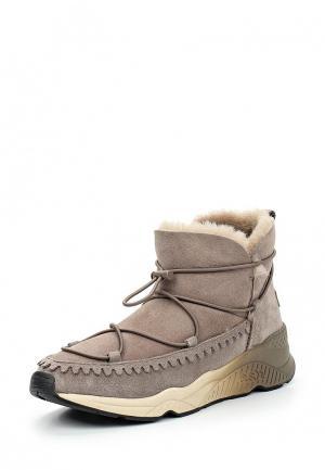 Ботинки Ash. Цвет: серый