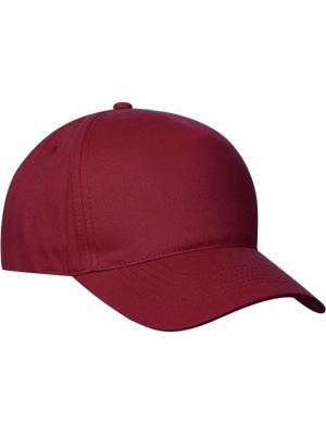 Clique Bull Cap бейсболка. Цвет: бордовый