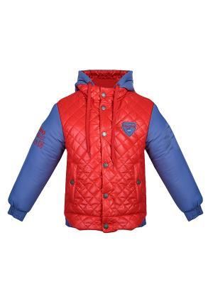 Куртка Bell bimbo. Цвет: красный, синий