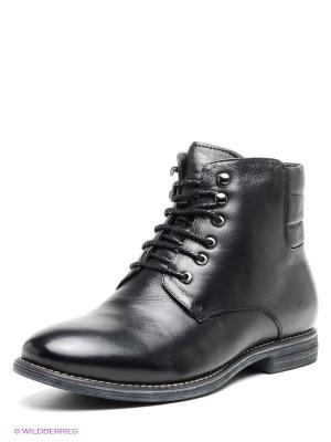 Ботинки TERRA IMPOSSA. Цвет: черный