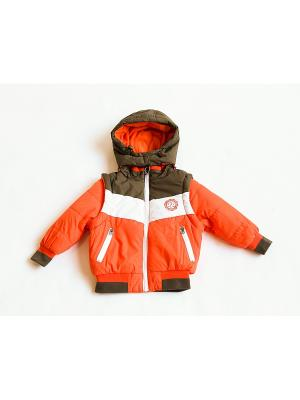 Куртка Iota. Цвет: оранжевый