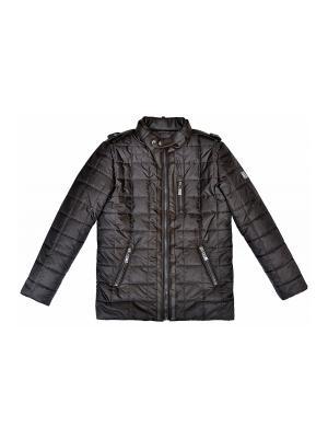 Куртка BORELLI. Цвет: коричневый