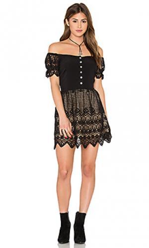 Платье firefly Jens Pirate Booty Jen's. Цвет: черный
