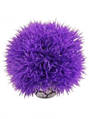 Растение для аквариума Шар 9см. LAGUNA. Цвет: фиолетовый