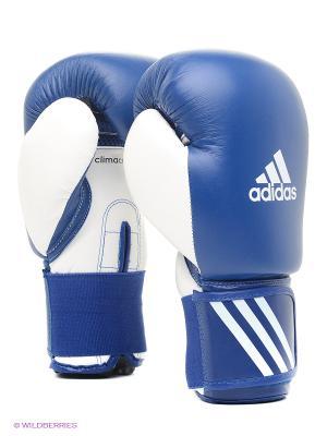Перчатки боксерские Performer Adidas. Цвет: синий