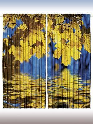 Плотные фотошторы Золотой клён над водой, 290*265 см Magic Lady. Цвет: желтый, синий, голубой, коричневый, черный