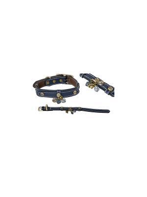 Ошейник кожа BEADS голубой XXXS 215*1,2*0,2 см размер шеи 15-18 для собак Happy House. Цвет: голубой