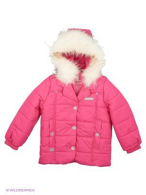 Куртка Kerry. Цвет: малиновый