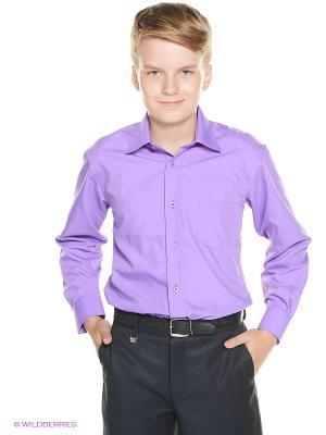 Рубашка Cascatto. Цвет: фиолетовый