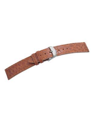 Ремень для часов, кожа БУЙВОЛА, коньячный, 20 x 18 мм (серебро) J.A. Willson. Цвет: светло-коричневый