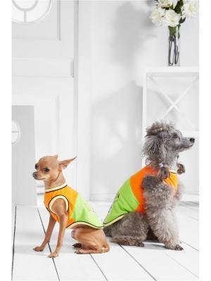 Футболка для собак Стильный Джеки Nothing but Love. Цвет: оранжевый, зеленый