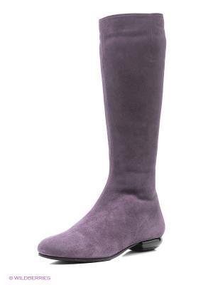 Сапоги La Gatta. Цвет: фиолетовый