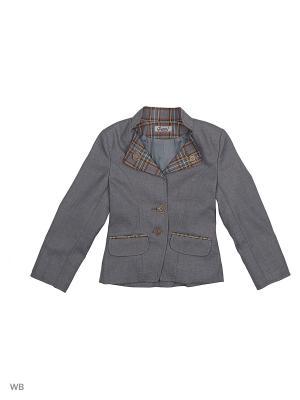 Пиджак Наша Форма. Цвет: серый