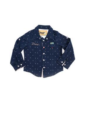 Детская рубашка Pilota. Цвет: черный, терракотовый