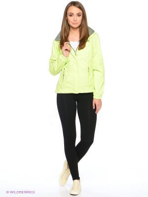 Куртка The North Face. Цвет: зеленый
