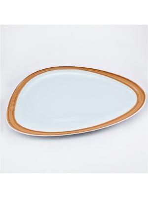 Блюдо овальное 23,5*41см. Муд Дерево Royal Porcelain. Цвет: белый