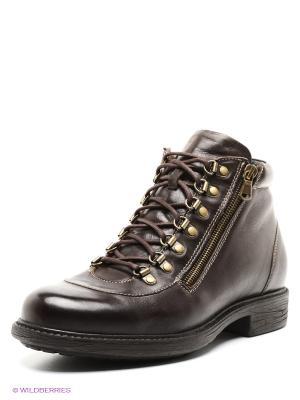 Ботинки Nord. Цвет: коричневый