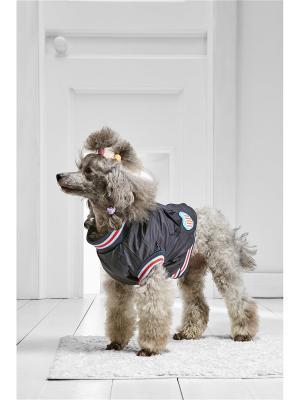 Утепленный жилет для средних пород собак весом 4-8 кг и длиной спинки около 35 см Любимец зрителей Nothing but Love. Цвет: черный, красный, серо-голубой