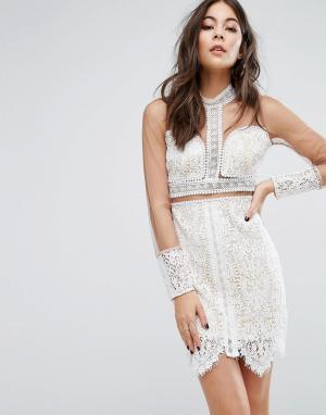 PrettyLittleThing Кружевное облегающее платье с сетчатыми рукавами. Цвет: мульти