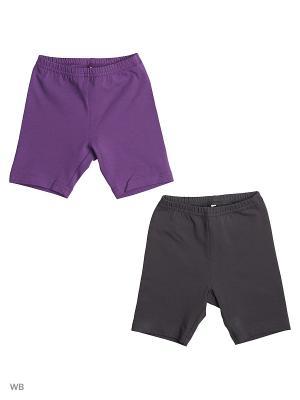 Шорты (комплект 2 шт) OFKA. Цвет: темно-фиолетовый, темно-серый