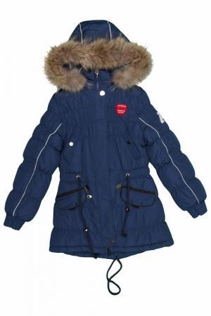 Куртка Arista. Цвет: синий