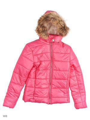 Куртки Senso kids. Цвет: розовый