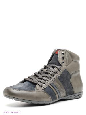 Ботинки Ascot. Цвет: синий, серый