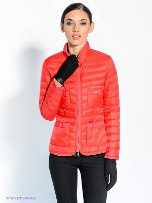 Куртка Marina Yachting. Цвет: красный