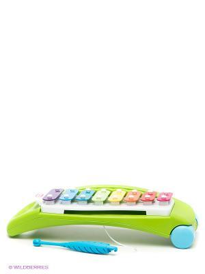 Игрушка Ксилофон Little Tikes. Цвет: светло-зеленый, голубой