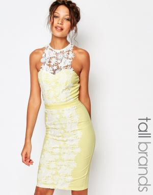 Paper Dolls Tall Платье-футляр с кружевными вставками. Цвет: желтый