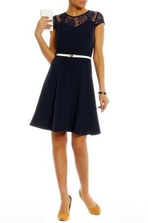 Короткое платье с кружевным верхом PAPER DOLLS. Цвет: navy