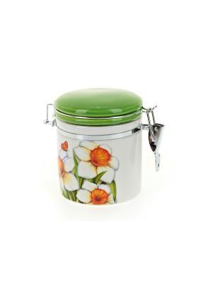 Банка для сыпучих продуктов Нарцисс, Polystar. Цвет: светло-зеленый