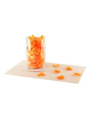 Набор декоративных лепестков EL CASA. Цвет: оранжевый