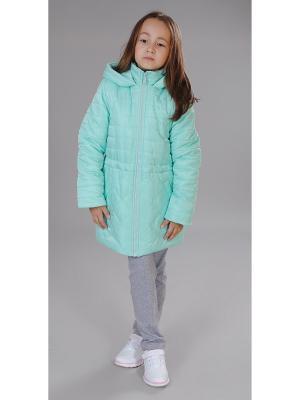 Куртка Милашка Сьюзи. Цвет: голубой, серо-зеленый