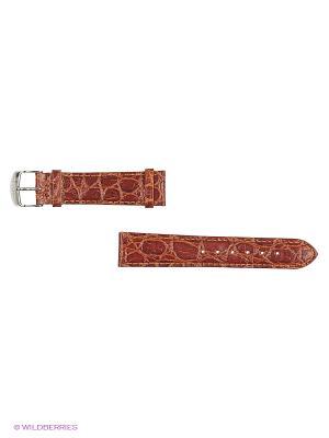 Ремень для часов, им.КРОКОДИЛА, лаковый, коричневый, 20 мм. J.A. Willson. Цвет: коричневый