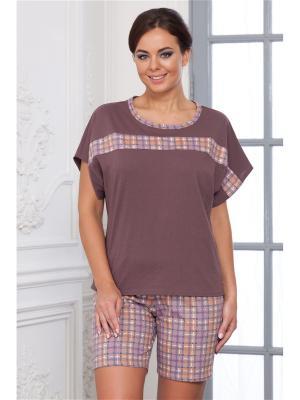 Комплект одежды CLEO. Цвет: сливовый