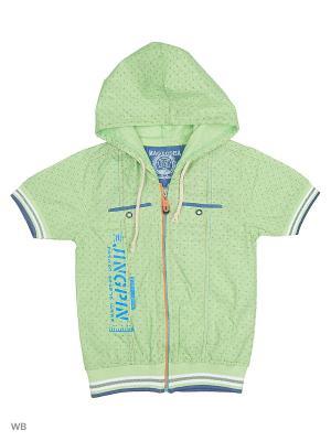 Жилет Vienetta Kids. Цвет: зеленый
