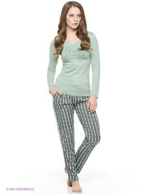 Комплект одежды CATHERINE'S. Цвет: серо-зеленый