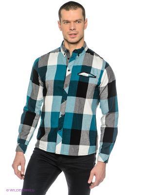 Рубашка OUTFITTERS NATION. Цвет: морская волна, белый, черный