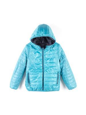 Куртка Coccodrillo. Цвет: синий,бирюзовый