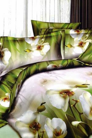 Постельное белье 2 сп 50х70 Patrizia. Цвет: зеленый