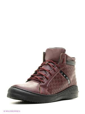 Ботинки VIVIAN ROYAL. Цвет: бордовый