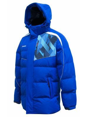 Пуховик Forward. Цвет: голубой, синий