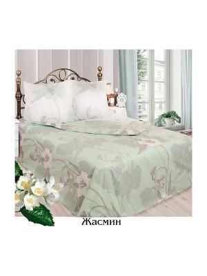 Постельное белье Евро Sova and Javoronok. Цвет: светло-зеленый, бежевый, белый