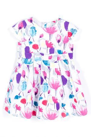 Платье Coccodrillo. Цвет: фиолетовый, розовый, белый
