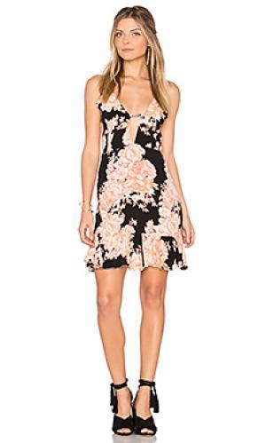 Короткое платье bonita Cleobella. Цвет: черный