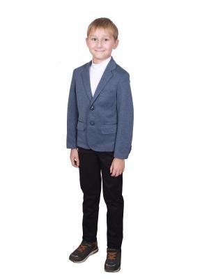 Пиджак Вуди ASN AseliN. Цвет: серо-голубой